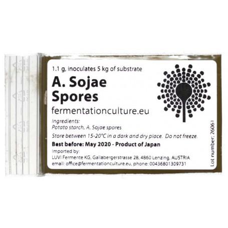 Koji Sporer Aspergillus Sojae Koji Sporer 1,1g BX10010